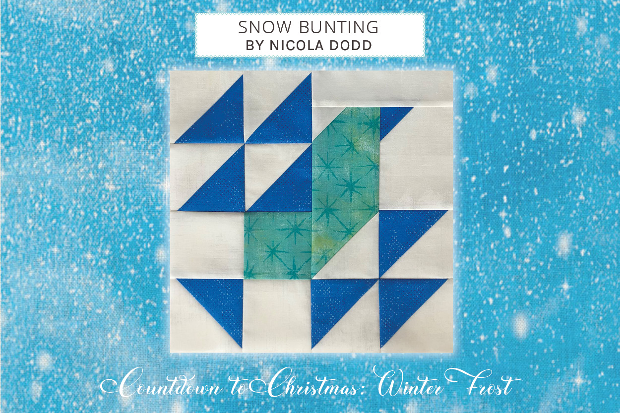 12_04_block_snow-bunting_nicola-dodd_cover.jpg