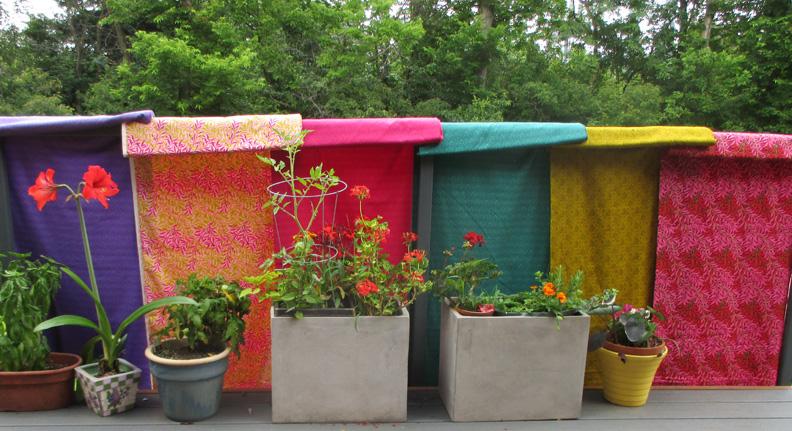 Brackman garden2