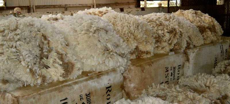 CT-Wool-Bales